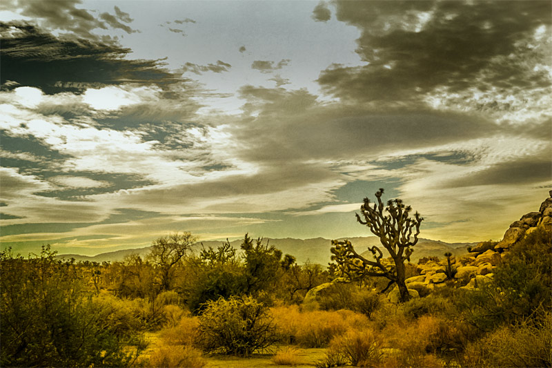 joshua tree rocks clouds fine art photo